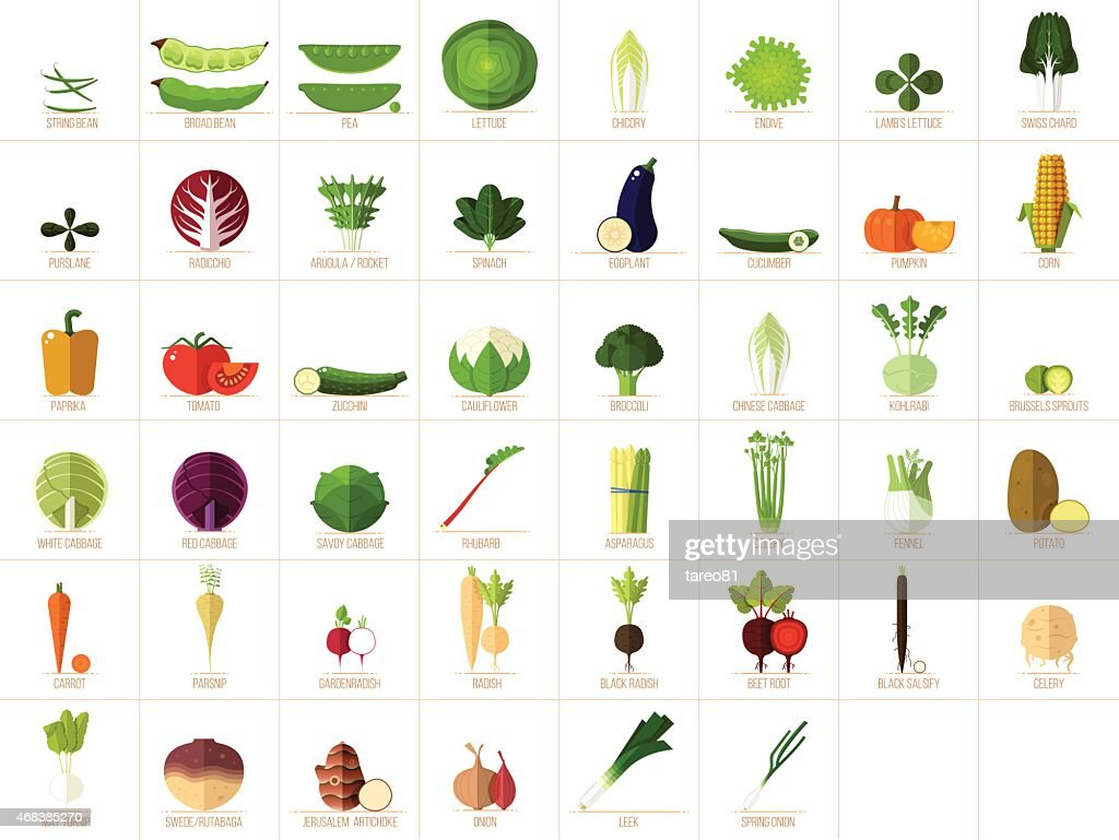 Vegetable Icons : stock illustration