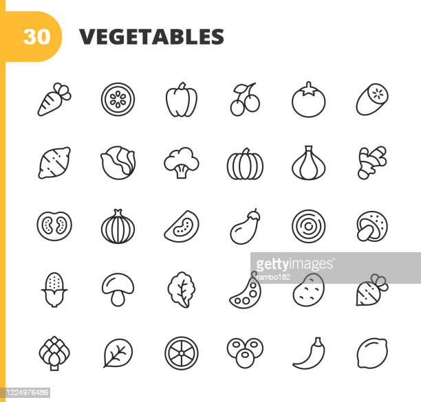 vegetable line icons. editable stroke. pixel perfect. for mobile and web. contains such icons as carrot, lemon, pepper, onion, potato, tomato, corn, spinach, bean, mushroom, ginger, radish, spinach, cucumber. - ginger spice stock illustrations