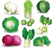 Vegetable set with cabbages