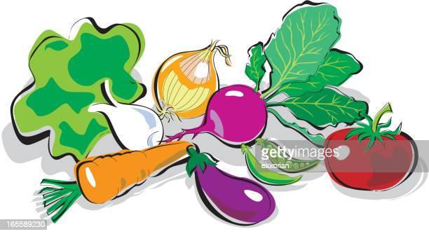 vegetable - bok choy stock illustrations, clip art, cartoons, & icons