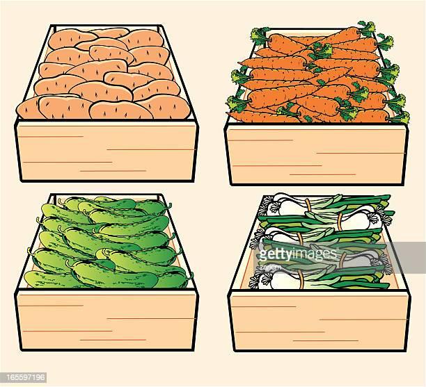 vegetable - leek stock illustrations, clip art, cartoons, & icons