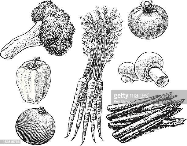 vegetables - carrots, broccoli, mushrooms, tomato - asparagus stock illustrations, clip art, cartoons, & icons