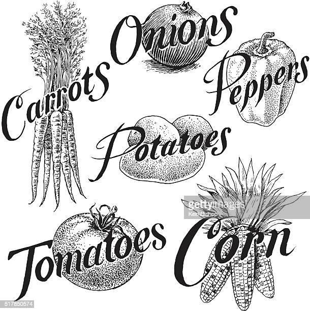 vegetables, corn, carrots, onions, pepper, tomato, potato - corn stock illustrations, clip art, cartoons, & icons