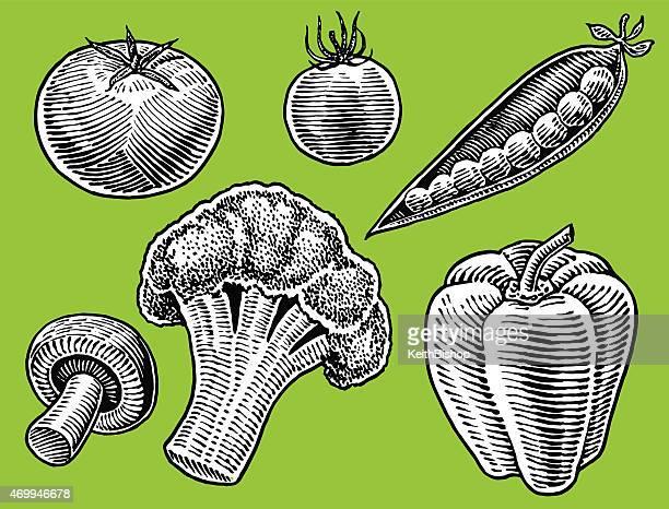 Vegetables - Green Pepper, Tomato, Mushroom, Broccoli