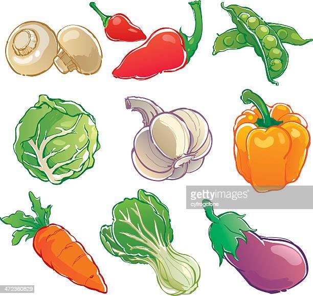 illustrazioni stock, clip art, cartoni animati e icone di tendenza di icona di verdure - cavolo cappuccio verde