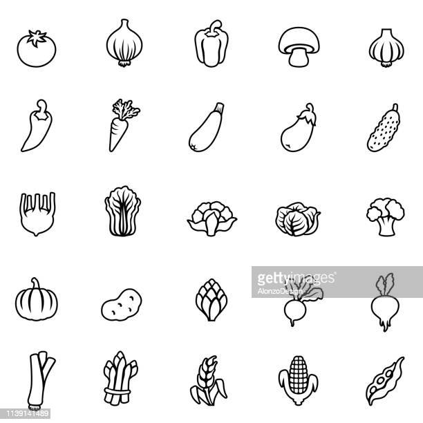 vegetables line icons - marrom stock illustrations