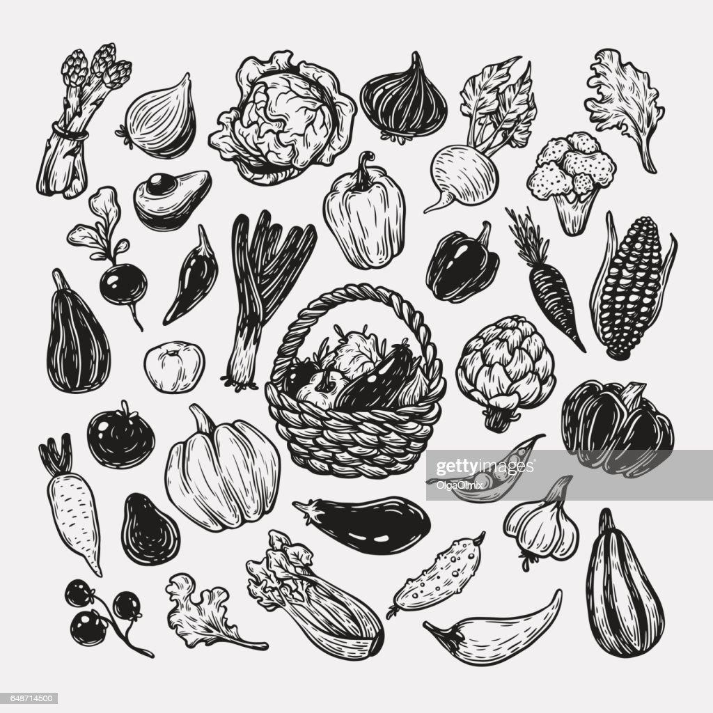 Vegetables, Set.