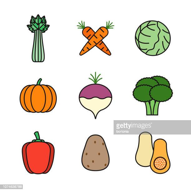 vegetables thin line icon set - white cabbage stock illustrations, clip art, cartoons, & icons