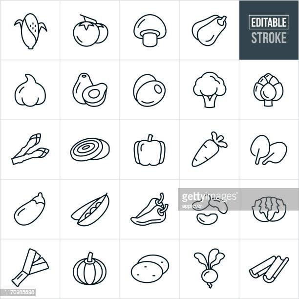 vegetables thin line icons - editable stroke - pepper vegetable stock illustrations