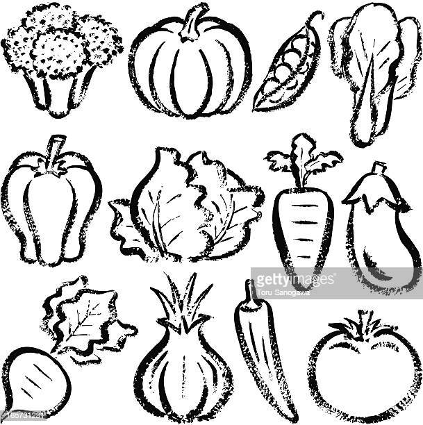 vegetables - white cabbage stock illustrations, clip art, cartoons, & icons
