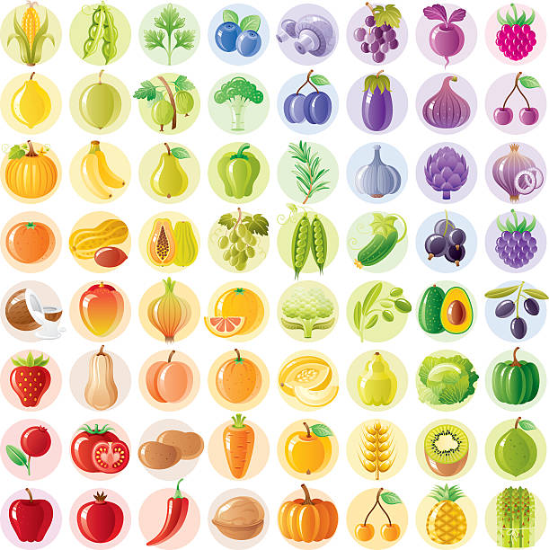 Vegetarian Rainbow Withe Fruits, Vegetables, Nuts, Berries Wall Art