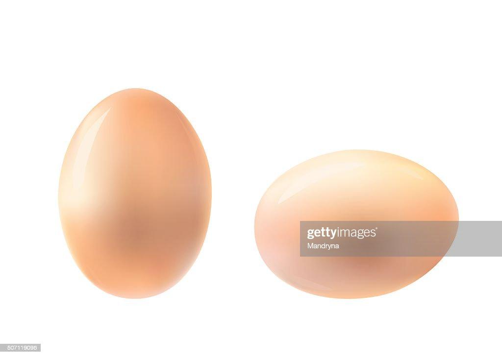 Vertical and horizontal egg illustration.