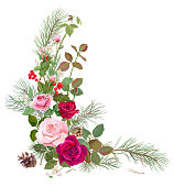 Vertical corner border with red, pink roses, pine branches, cone, holly berry, common snowberry. Design concept for Christmas: flowers, leaves, white background, digital draw, watercolor style, vector