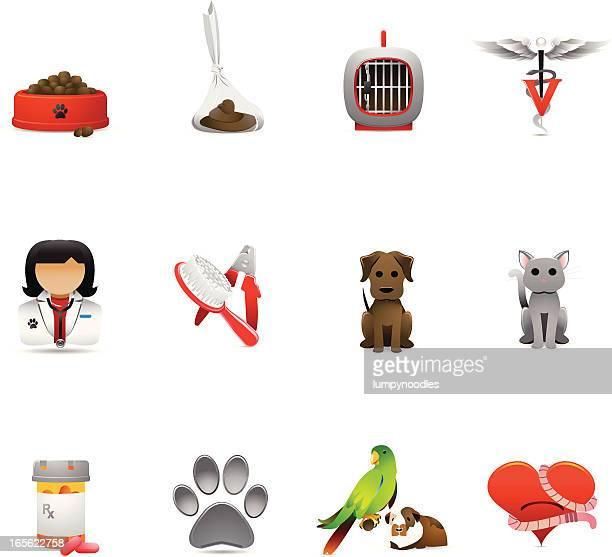 illustrazioni stock, clip art, cartoni animati e icone di tendenza di veterinario icone - cacca