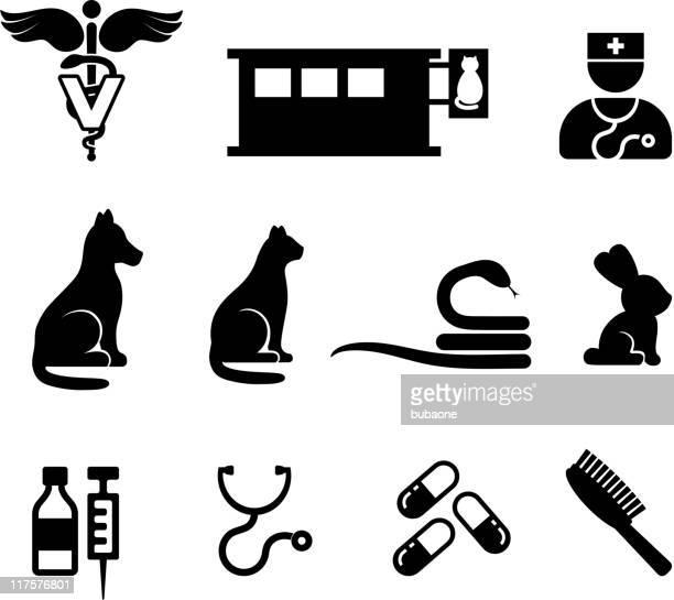 veterinary black and white royalty free vector icon set - veterinarian stock illustrations, clip art, cartoons, & icons