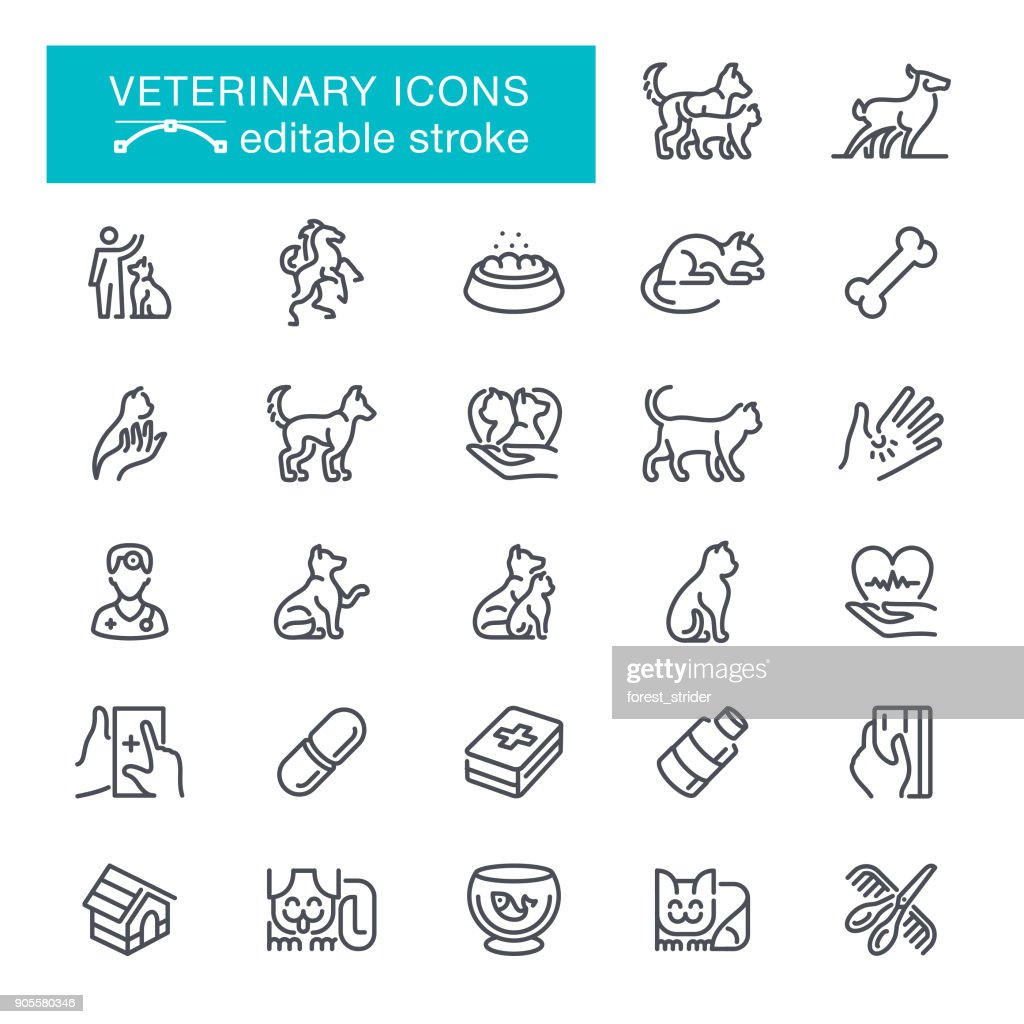 Veterinary Editable Stroke Icons
