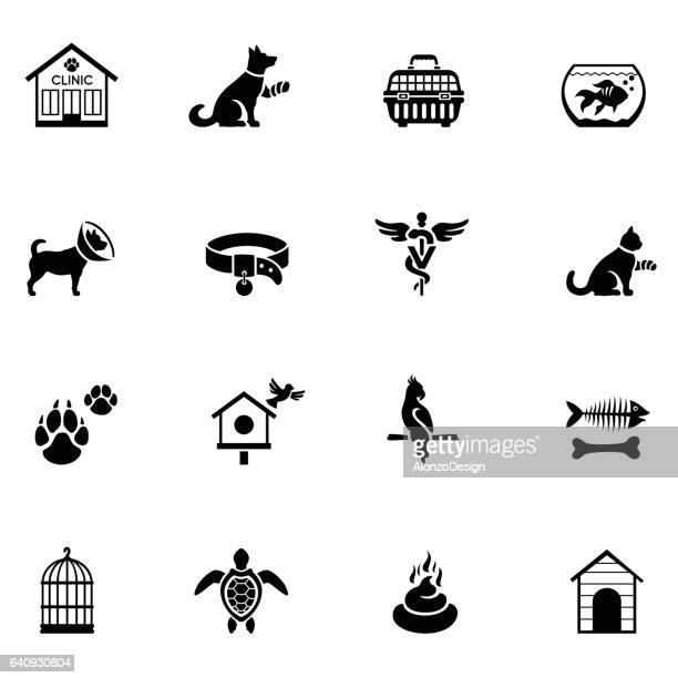 veterinary icon set - dog bowl stock illustrations, clip art, cartoons, & icons