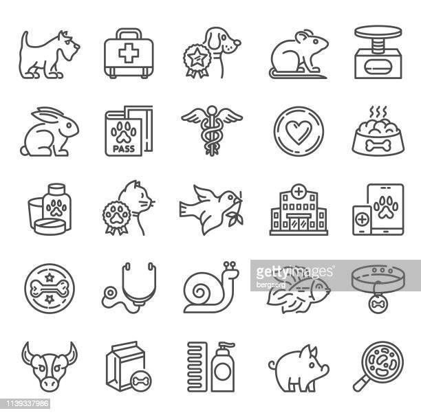 illustrations, cliparts, dessins animés et icônes de icônes vétérinaires - escargot