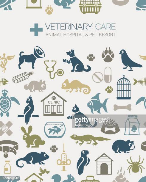 Veterinary Seamless Pattern