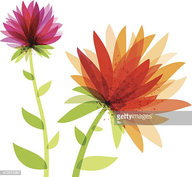 vibrant abstract flowers - single flower stock illustrations
