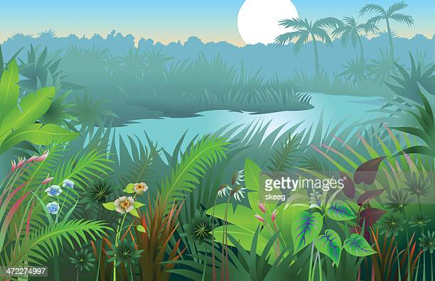 A vibrant image of a jungle landscape background