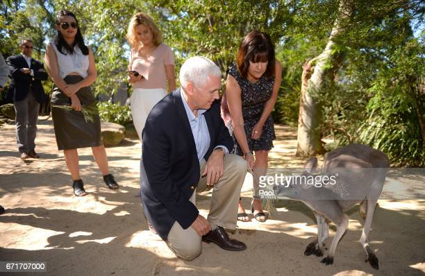S Vice President Mike Pence and his wife Karen and children Audrey and Charlotte look at a red kangaroo on a visit to Taronga Park Zoo on April 23...