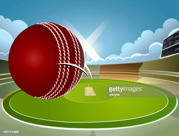 victory - cricket background - cricket field stock illustrations