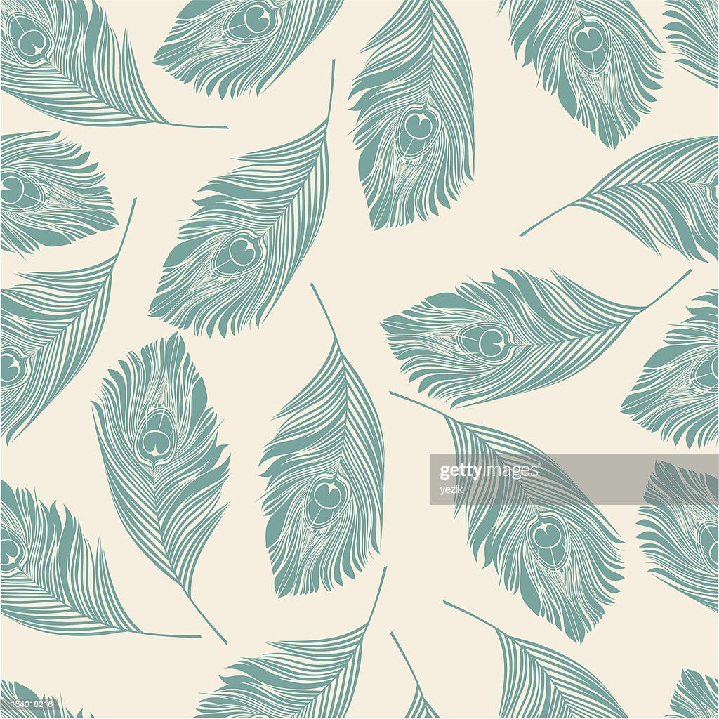 View of peacock pattern on white background