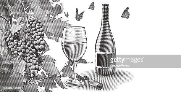 ボトルのワインとブドウ畑ワイン ブドウ