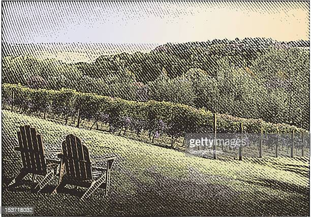 Vineyard With Chairs