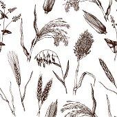 Vintage background with industrial crops illustration.