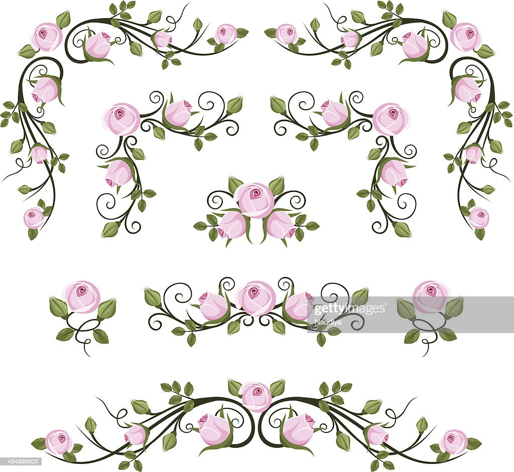 Vintage calligraphic vignettes with pink roses. Vector illustration.