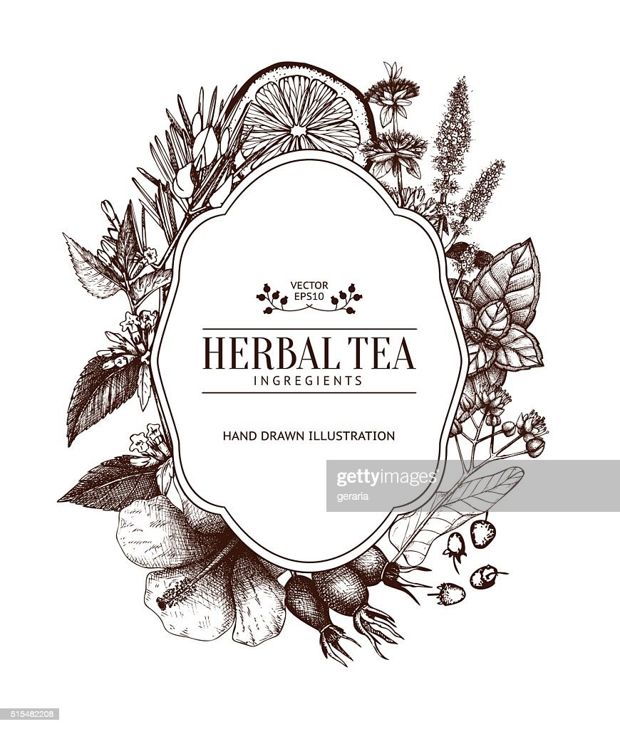 Vintage card design with herbal tea sketch collection.