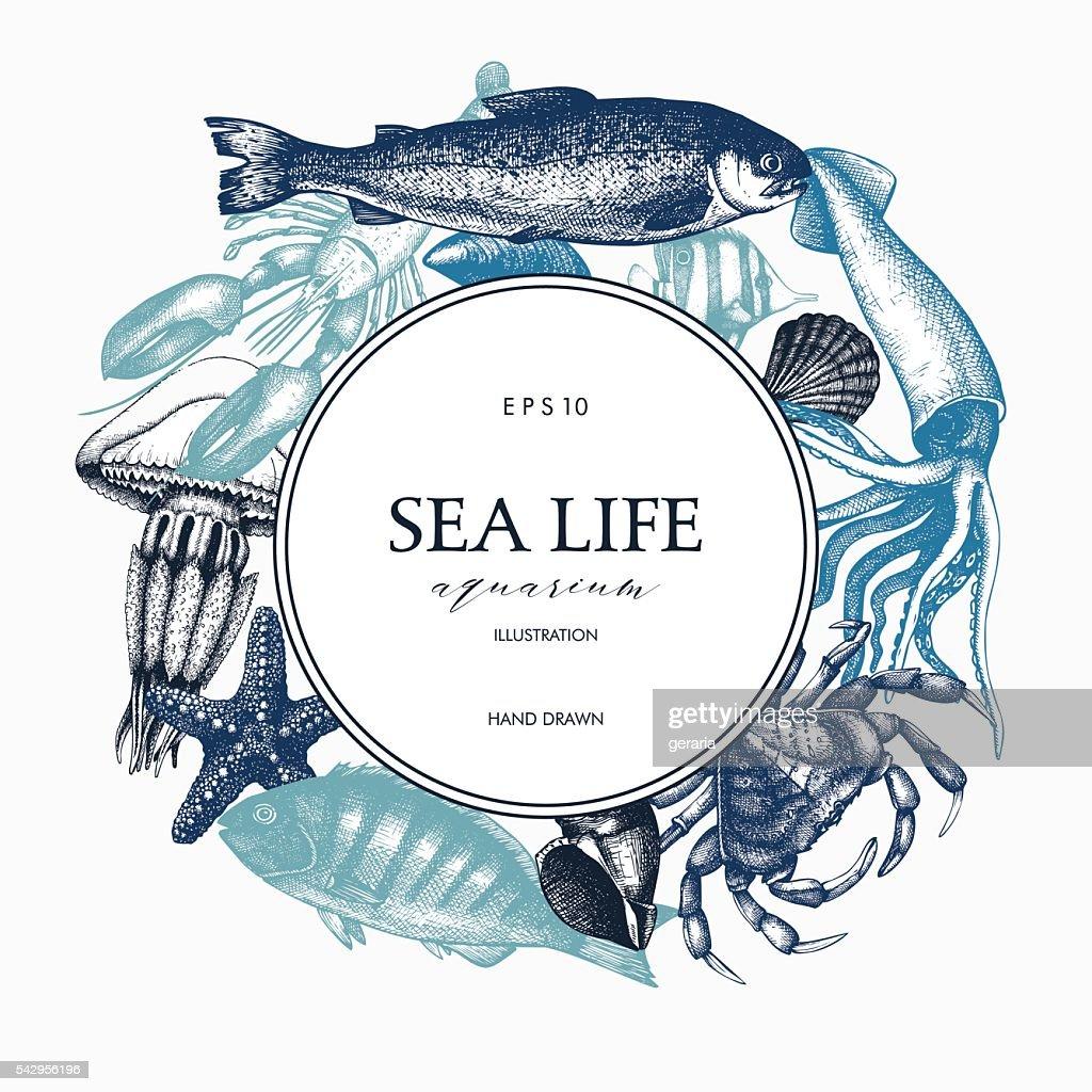 Vintage card design with sea life illustration