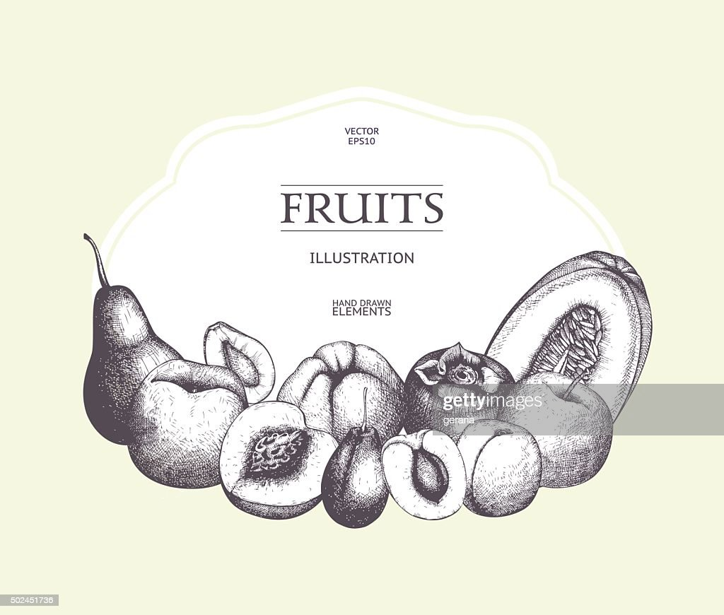 Vintage card design with vector inking fruits sketch.