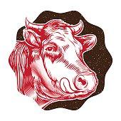 vintage cow's muzzle illustration