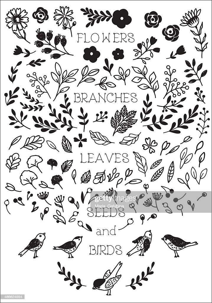 Vintage decorative flowers and birds set
