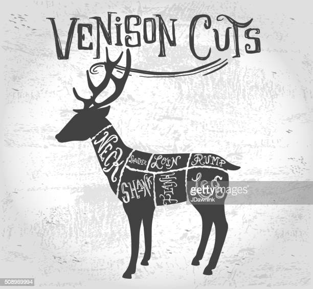 Enjoyable Vintage Deer Or Venison Cuts Butcher Diagram Stock Vector Getty Images Wiring 101 Cajosaxxcnl