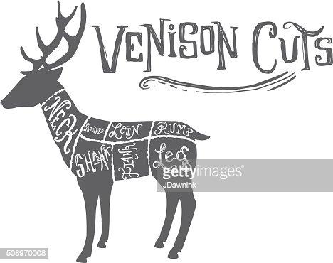 vintage deer or venison cuts butcher diagram stock illustration - getty  images