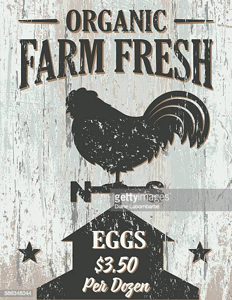 ilustrações, clipart, desenhos animados e ícones de vintage faded farm sign on wood background - frescura