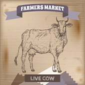 Vintage farmers market label with live cow.