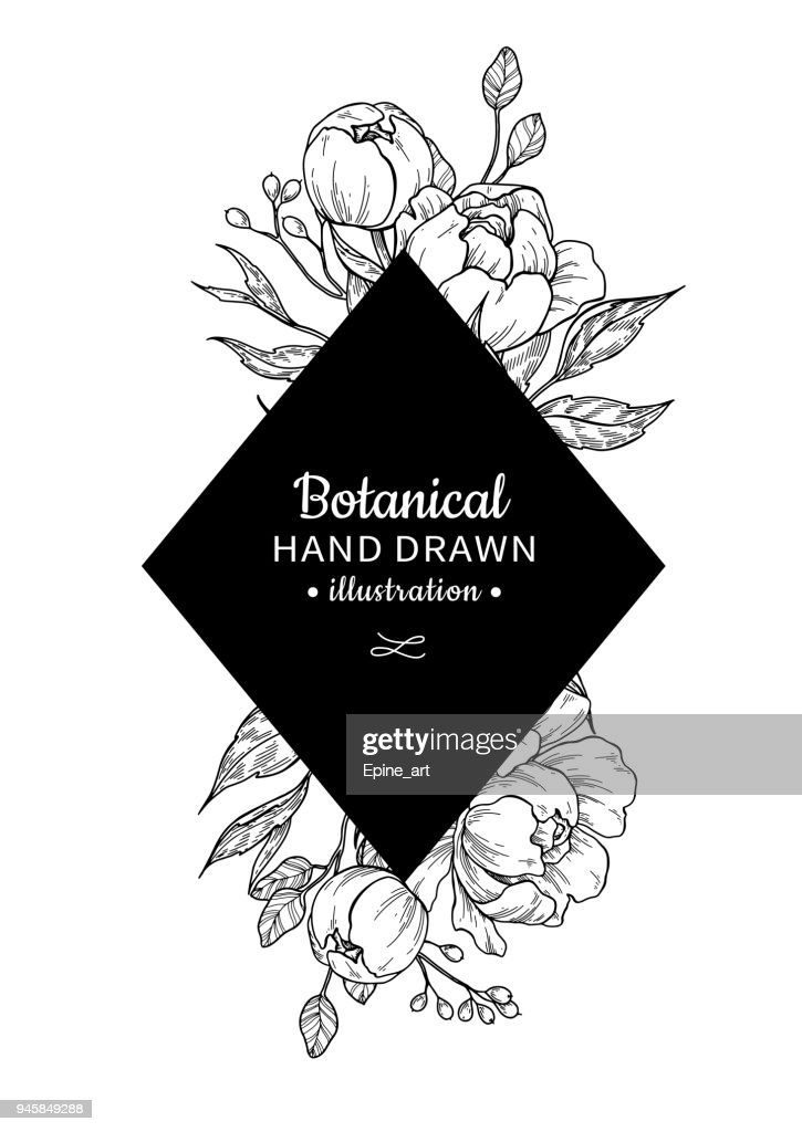 Vintage flower vector frame drawing. Peony, rose, leaves and ber
