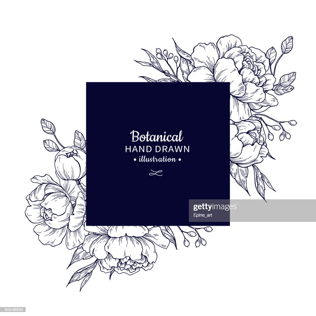 Vintage flower vector square frame drawing. Peony, rose, leaves and berry sketch composition