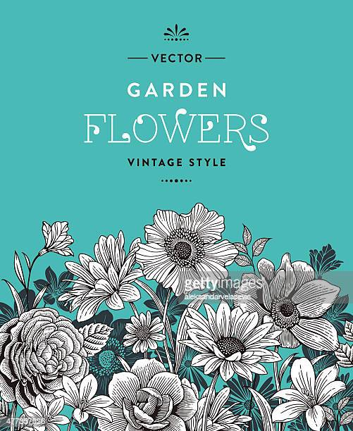 vintage flowers - single flower stock illustrations