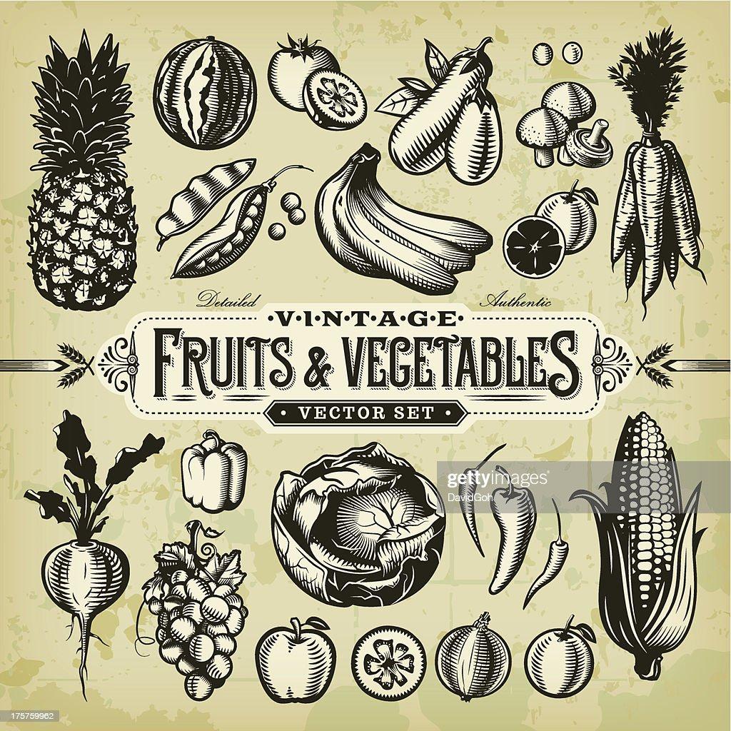& conjunto de verduras Vintage frutas : Ilustración de stock