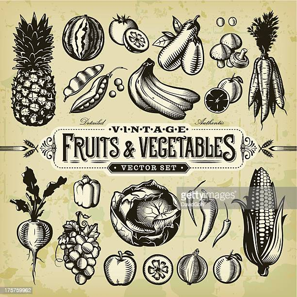 vintage fruits & vegetables set - corn stock illustrations, clip art, cartoons, & icons