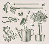 Vintage garden equipments