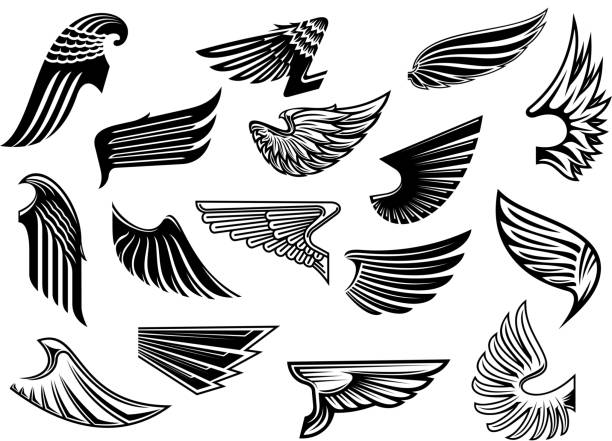 Free eagle wings Images, Pictures, and Royalty-Free Stock