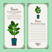 Vintage label with decorative ficus plant