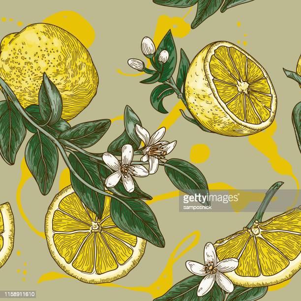 vintage lemon citrus blossom seamless pattern - citrus fruit stock illustrations, clip art, cartoons, & icons